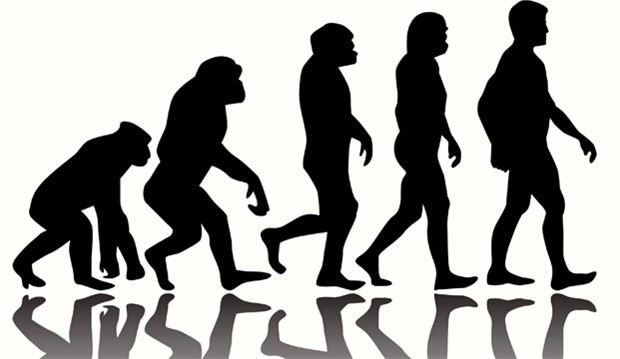 İnsan maymundan evrimleşmiştir