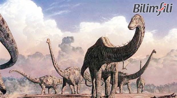 Dinozorlardan bu yana en büyük kitle yok oluşunun eşiğindeyiz