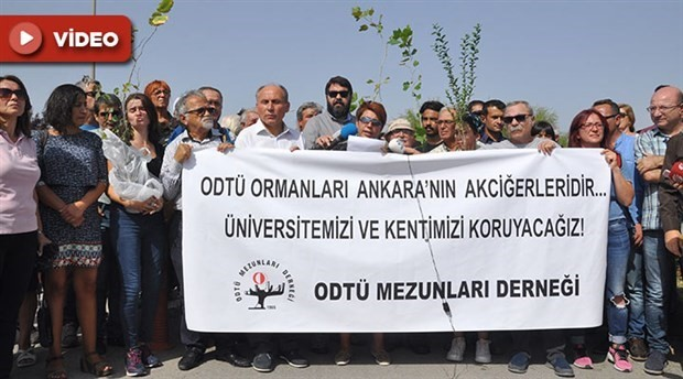 Destruction of trees on METU campus for construction of a road sparks reaction
