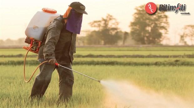 Folik asit, böcek ilaçlarına bağlı otizm riskini azaltıyor