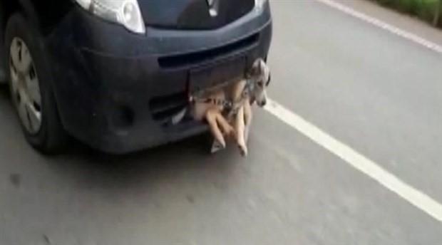 Arabanın çarptığı köpek sıkıştığı tamponda dakikalarca sürüklendi