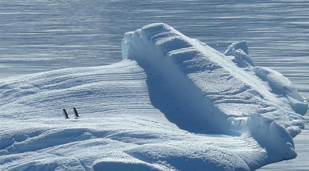 Kuzey Kutbu turizmi buzulların erimesine yol açıyor