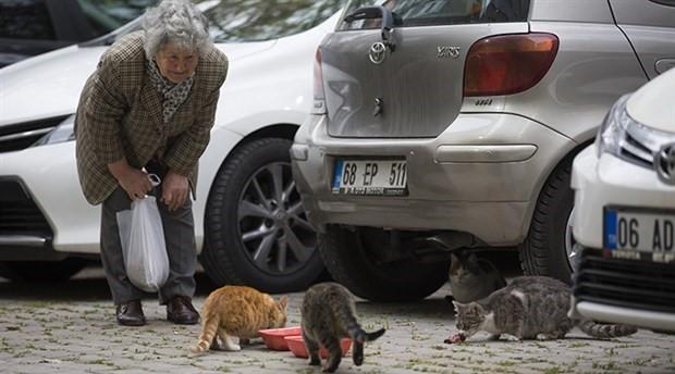 77 yaşındaki Azime İplikçi sokak kedilerini beslemek için günde 3 saat yürüyor