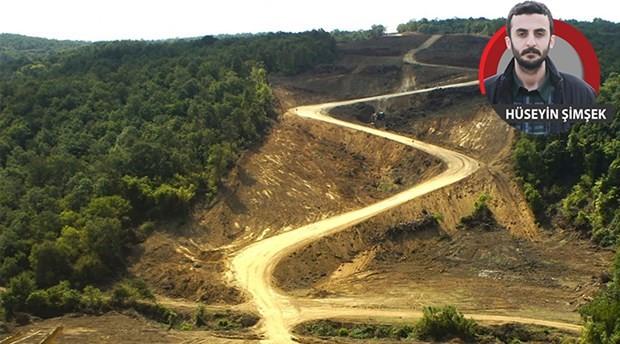 Çanakkale büyüklüğünde ormanlık alanı yok ettiler