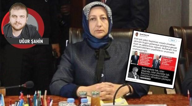 'Tarafsız' Danıştay üyesi de siyasette!