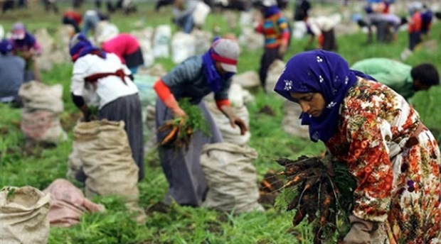 Mevsimlik işçiler için 100 milyonluk yatırım yapılmış