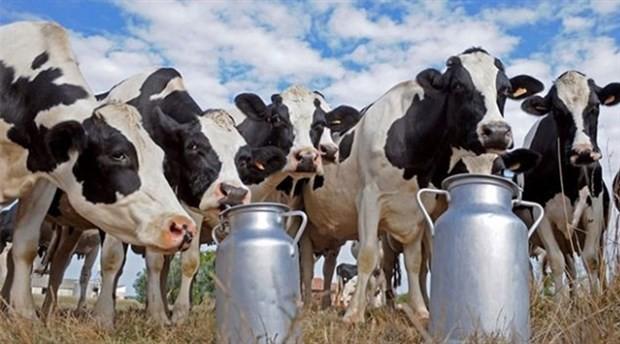 'Bedelli parasından süt üreticisine de verin'