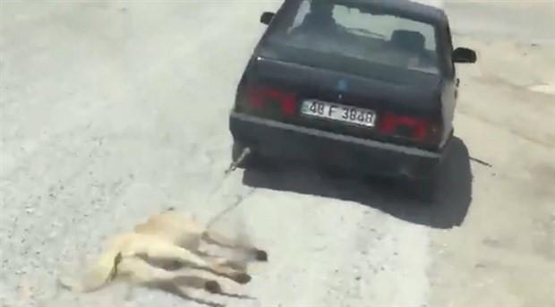 Köpeği aracının arkasında sürükleyen şahıs serbest bırakıldı