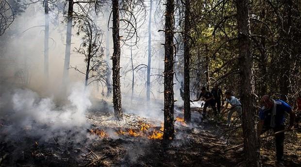 ODTÜ ormanlarında 10 dönüm alan kül oldu