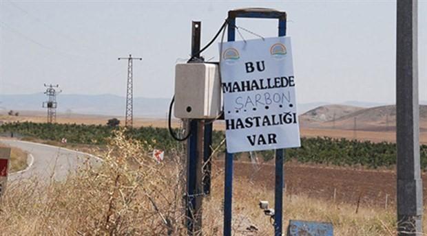 Ankara'daki şarbon vakasıyla ilgili inceleme talimatı