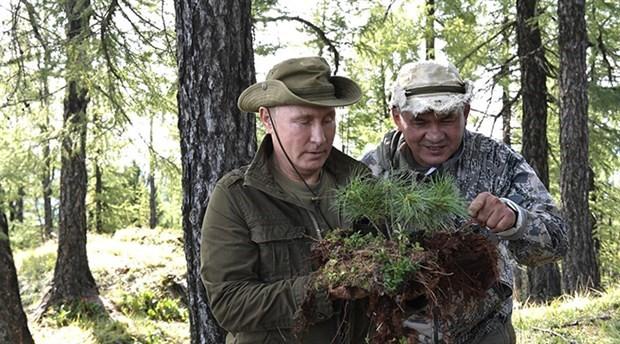 Putin mantar topladı