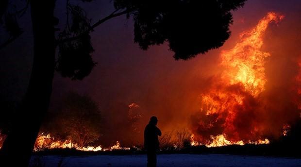 İklim değişikliği orman yangınlarını artırıyor