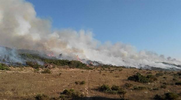 Aydın'ın Didim ilçesinde yangın: 5 hektar makilik alan yandı