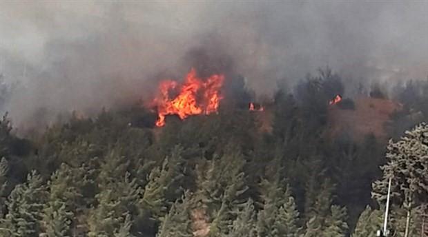 Osmaniye'de yangın; mahalle boşaltıldı