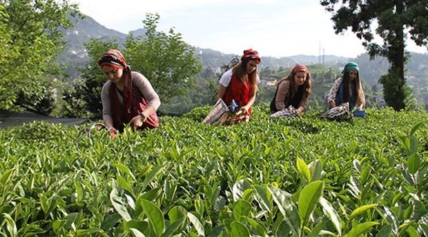 Mevsimlik işçiler kadroya alınsın