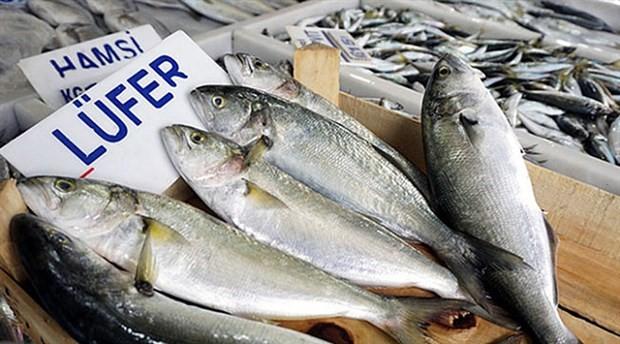 Balık fiyatları bir haftada iki kat arttı
