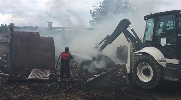 Gelibolu'da çiftlikte yangın: 55 koyun hayatını kaybetti