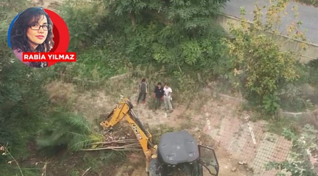 Ranta açılan üniversite arazisinde ağaç katliamı!