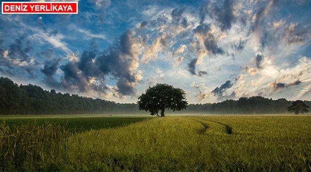 Doğa ile uyumlu yaşamalıyız