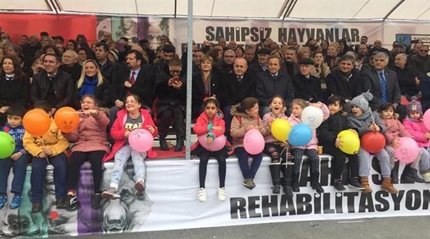 Kadıköy Belediyesi'nden sahipsiz hayvanlar için 'rehabilitasyon ve eğitim merkezi''