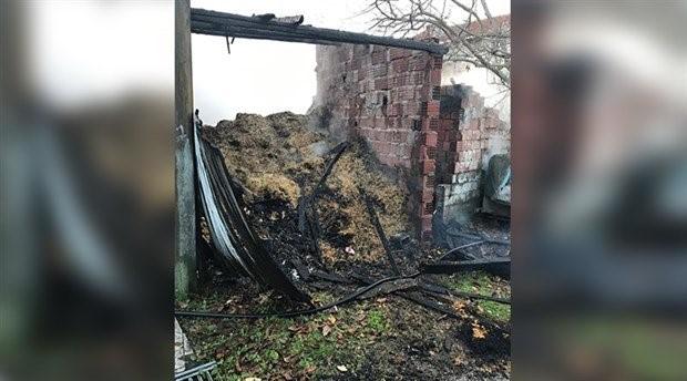 Ahırda çıkan yangında 2 hayvan yaşamını yitirdi