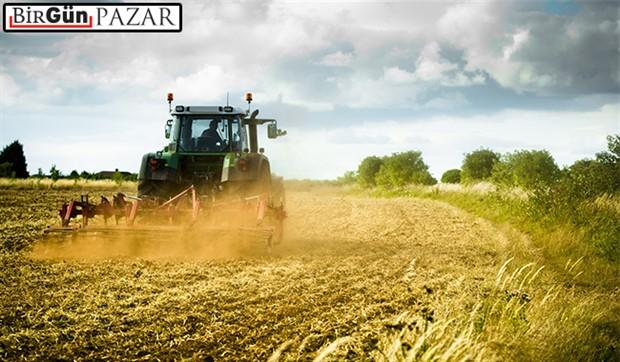 Türkiye'de 3.2 milyon hektar  tarım arazisi neden boş kaldı?