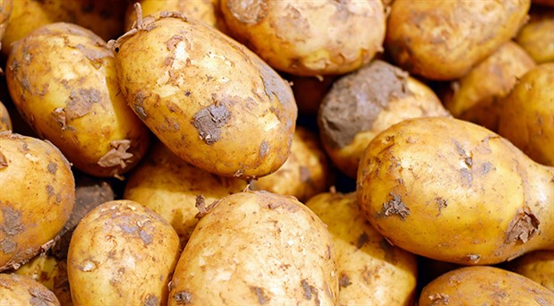 Patates fiyat artışında Türkiye dünya 2'ncisi