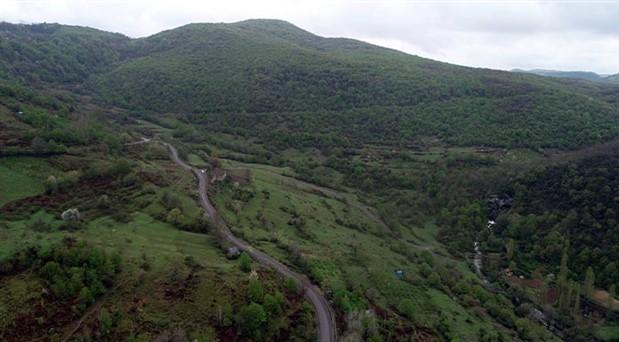 Mücadelenin zaferi: Zonguldak'ta 3 bin ağaç kurtuldu