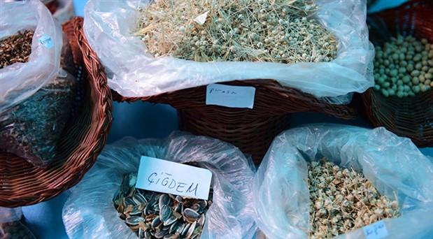 Yerel tohumlar Bornova'da geleceğe taşınıyor