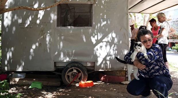 Kedi evine dönüştürülen karavanı siteden atmak istiyorlar