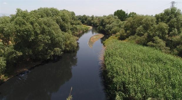 Gediz Nehri kimyasal atıklar nedeniyle zehir saçıyor