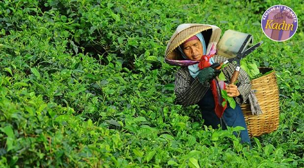 Tarım işçisi kadınların yüzde 90'ı kayıt dışı çalışıyor: Feministin çantasında tohumları ekenler var