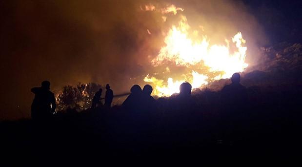 Muğla Valiliği: Datça'daki yangın kısa devreden çıktı