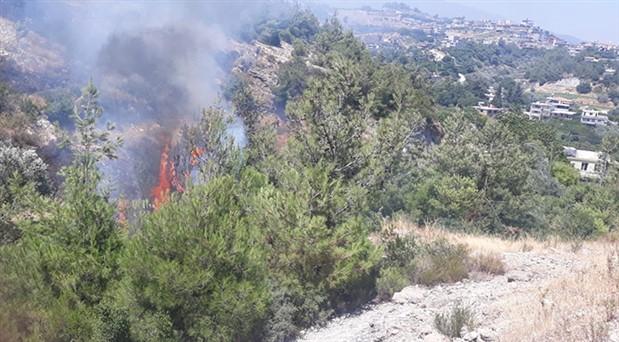 Hatay'da zeytin bahçesinde çıkan yangın ormanlık alana sıçradı