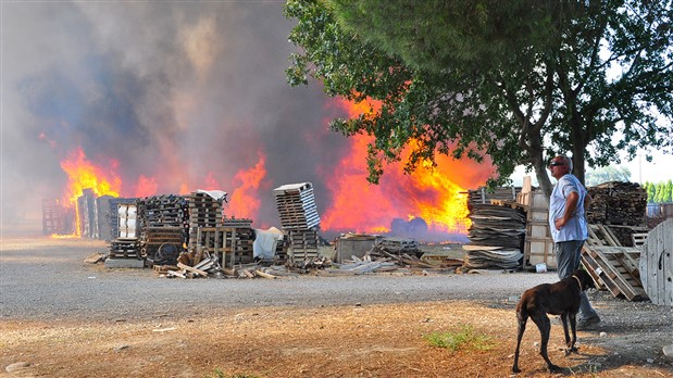Manisa'da palet fabrikasında yangın