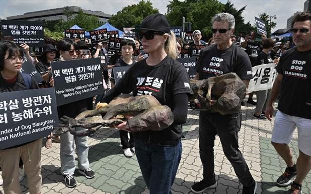 Güney Kore'de köpek eti yenmesine karşı protesto gösterisi