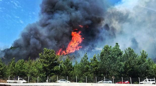 Turistik bölgelerde kuşkulu yangınlar: 350 hektarlık alan kül oldu