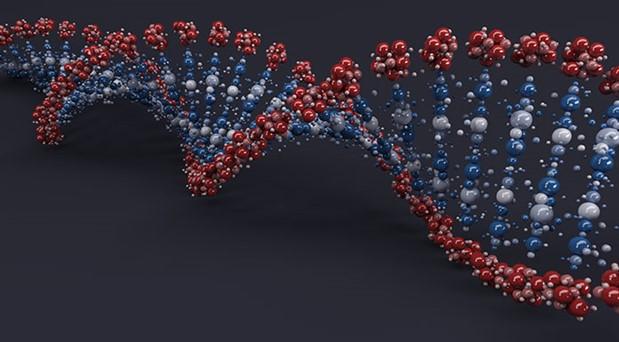 Tahtayı en kalın yerinden delmek:  Bilimin sancılı mücadelesi