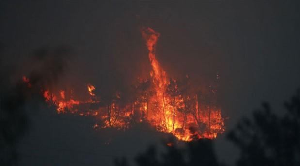 Hırvatistan'da müzik festivali yakınında orman yangını: 10 bin kişi tahliye edildi