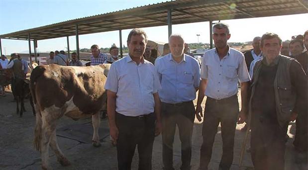 İthal et ve hayvan, üreticileri zor durumda bırakıyor