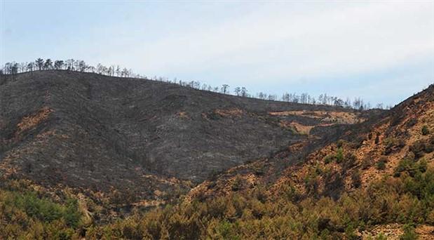 'Orman Bakanlığı'nın notu sıfır'