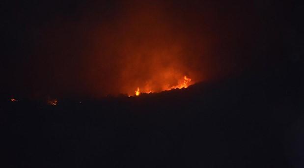 Nazilli'de çıkan yangın kontrol altında
