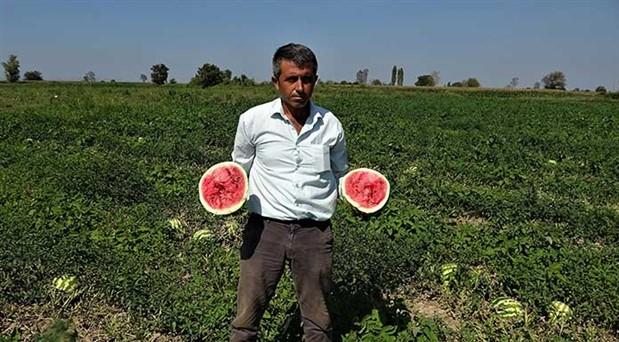 Bursalı çiftçiler ürünlerini zararına bile satamıyor