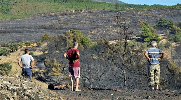 Urla yangını söndürüldü, Menderes ve Seferihisar devam ediyor