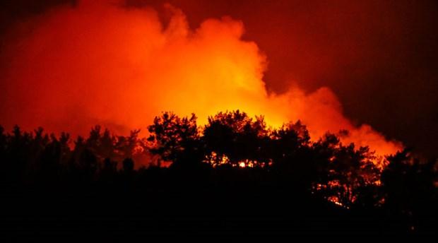 Tunç Soyer'den orman yangınları için çağrı