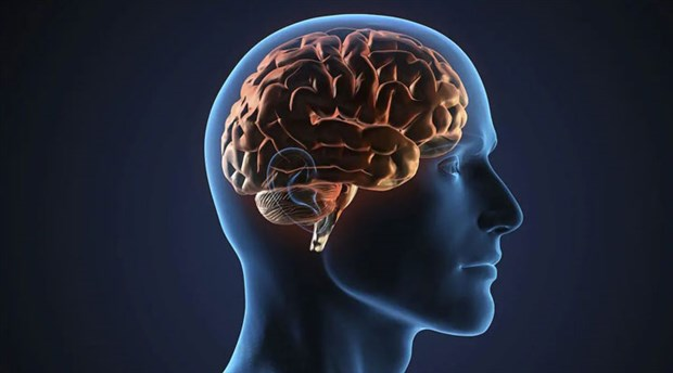 Epilepsi tedavisine umut olabilecek keşif