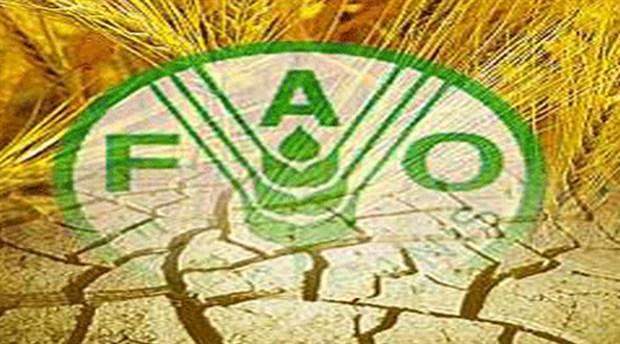 Küresel gıda fiyatları yüzde 1,1 arttı