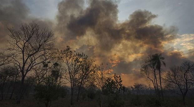 Amazon'da hava kirliliği artıyor