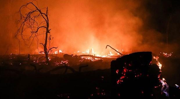 Bolivya'daki yangında 2 milyon hektar alan kül oldu