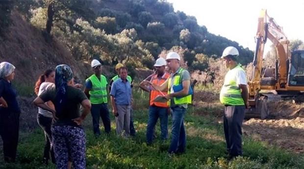 Değirmendere'de JES şirketi zeytin ağaçlarını asitle kurutmuş